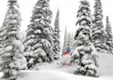 Best Trail at Schweitzer-Big-Timbe